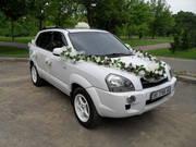 Белоснежные свадебные авто.