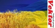 Курсы украинского языка. Херсон