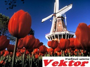 Курсы нидерландского языка. Херсон