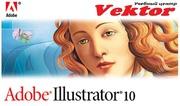 Курсы Illustrator