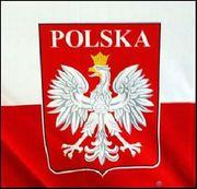 Обучающий курс польского языка в учебном ц. Nota Bene!