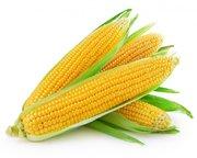 Куплю кукурудзу дорого