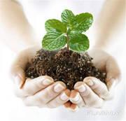 Куплю гербициды,  минеральные удобрения Сумы